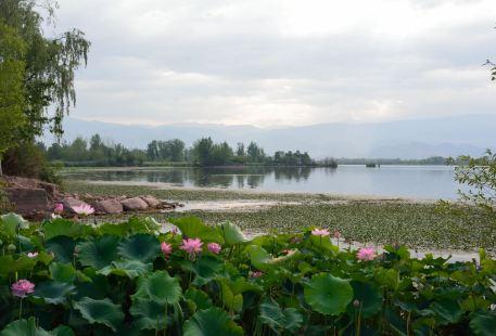 觀鳥島濕地公園