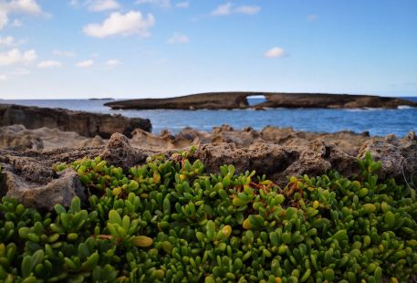 Laie Point State Wayside Park