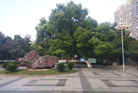 人民公園動物園