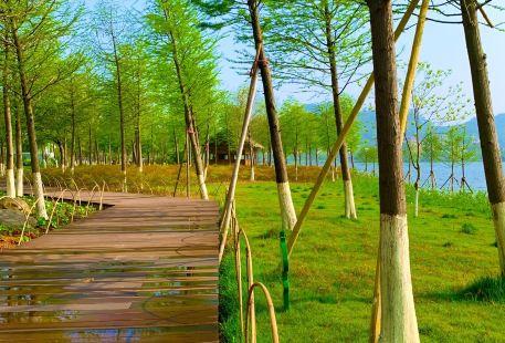 Yueqingshi Qinghe Park