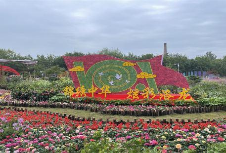 중국국화원