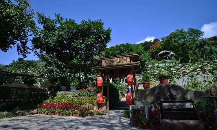 Evergreen Resort3