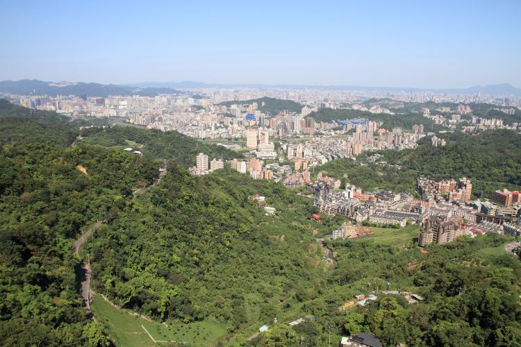 台北市立動物園4