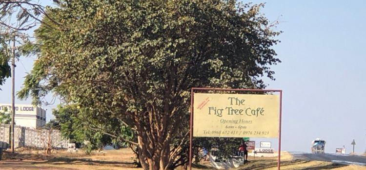 Fig Cafe Bar