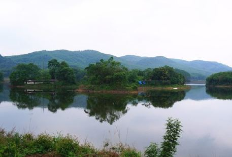Junwu Forest Park
