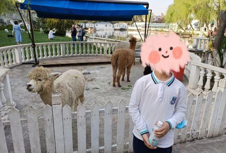 Jinting Zoo