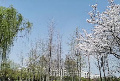 Chenxi Shengli Park