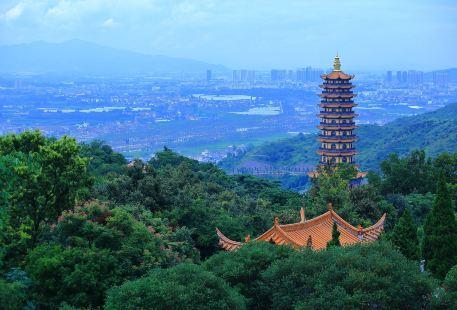Mt. Jinping Scenic Resort