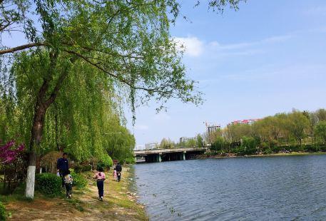 Yushun Park