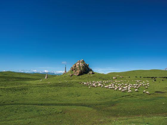 Meiren Prairie