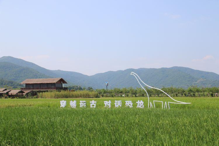 水稻國家公園3