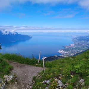 Riviera Suisse,Recommendations