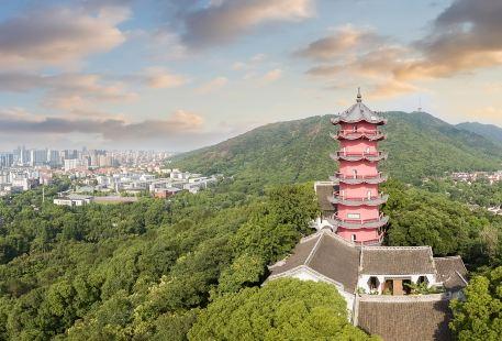 Xishan Longguangta