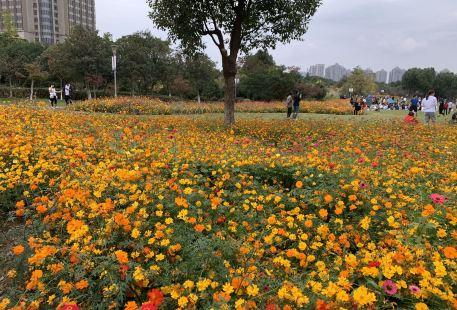 Ningboyuanshi Park