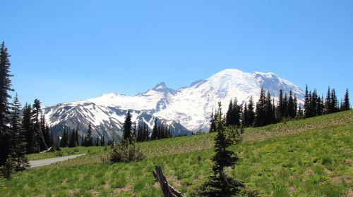 Mount Field National Park