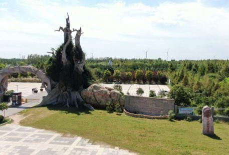 둥밍 황허 국립습지공원동물원