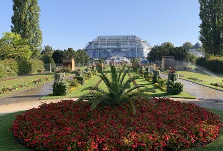 ベルリン ダーレム植物園