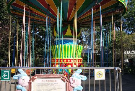 Yangpu Park Amusement Park