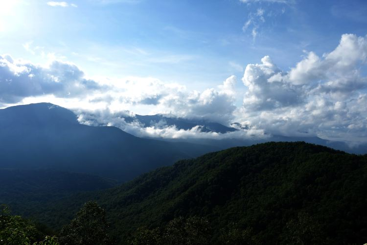 Dawei Mountain National Forest Park3