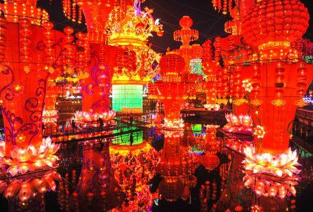 Chinese Lantern Museum