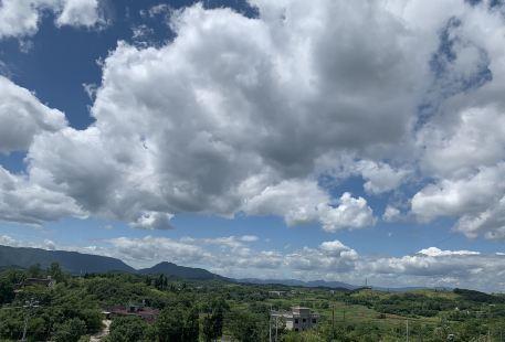 Shaodong Dayunshan Forest Farm