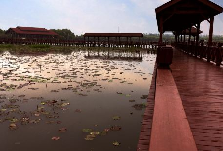 Ningguo Banqiao Nature Reservations