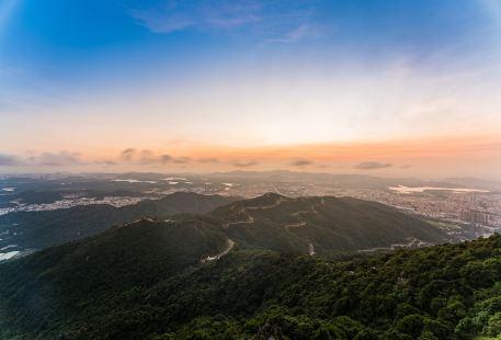 Chuitaishan Forest Park