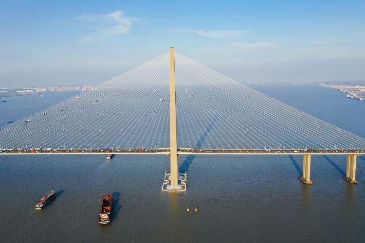 蘇通大橋3