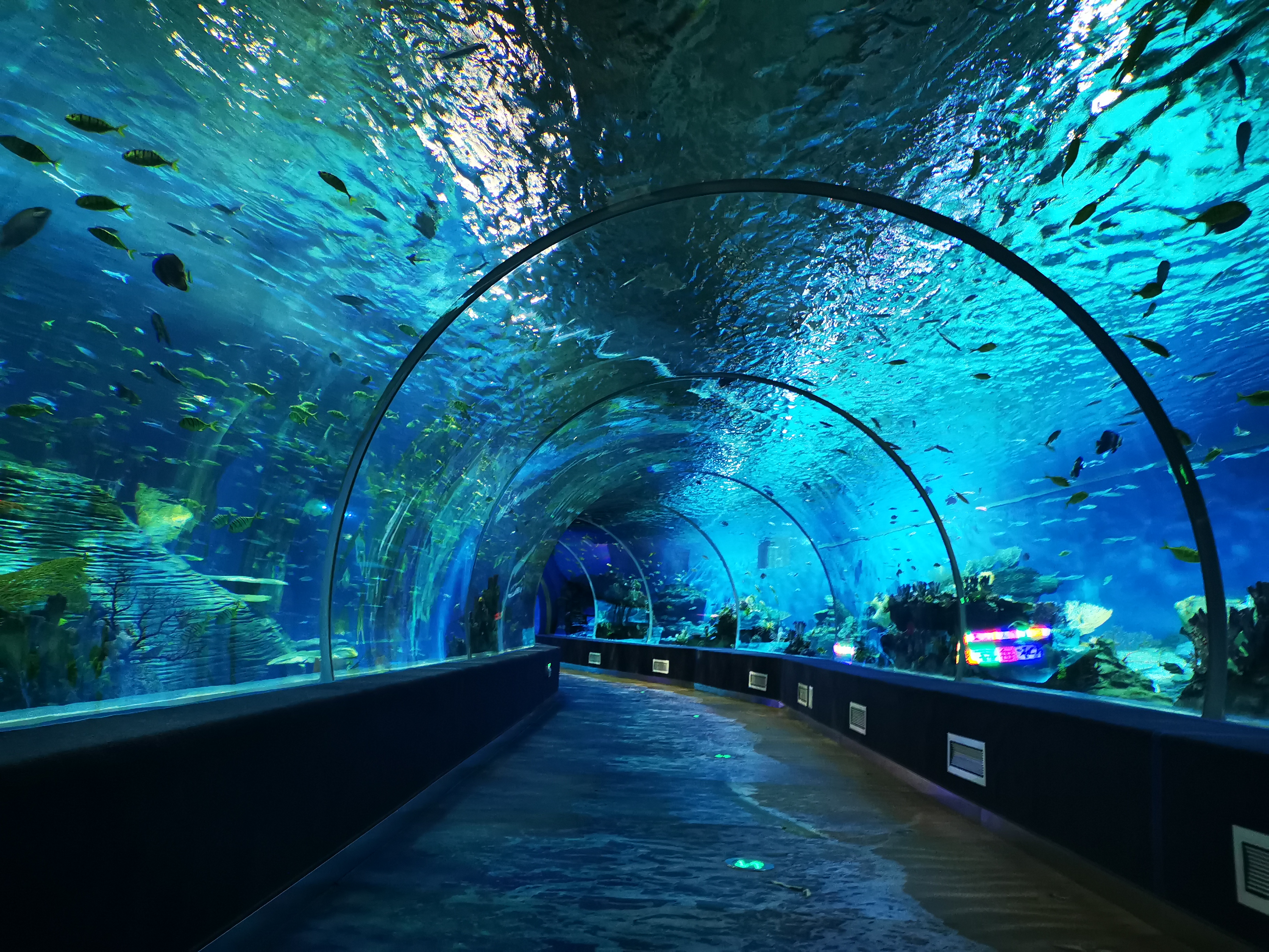 阜陽堯泰漢海海洋公園