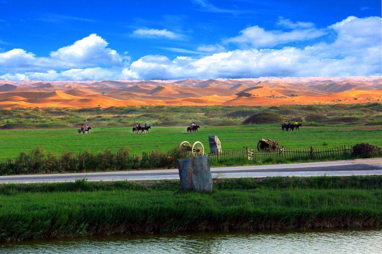 Tonghu Grassland