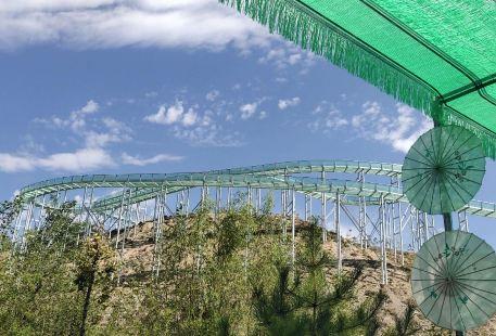Ta'erwan Water Amusement Park