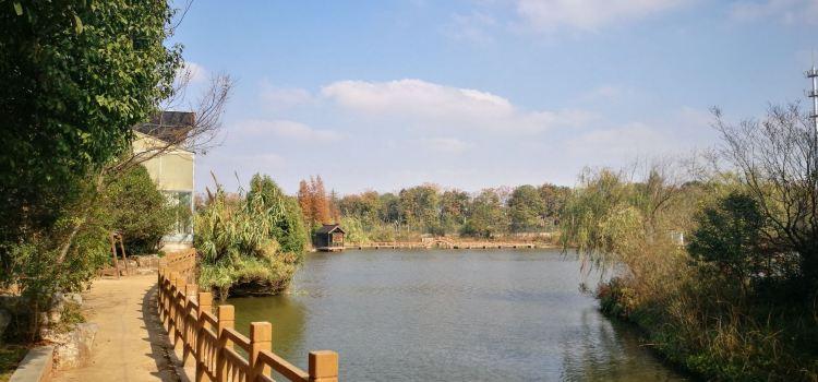 容南風景生態園1