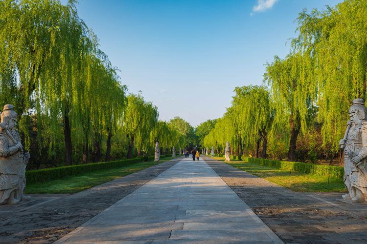 Shenlu Park2