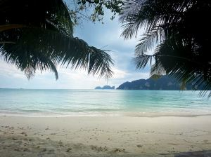 Phi Phi Islands,Recommendations