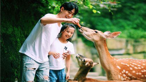 碧峰峽野生動物世界