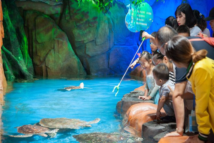 Xuzhou Underwater World1