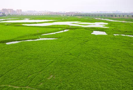Yunhai Wetland Golf Club