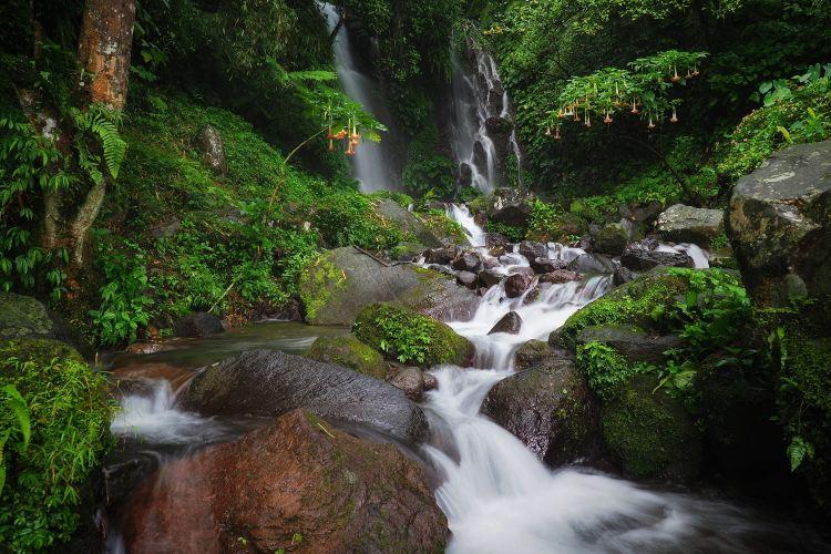 Mt. Yunji Nature Reserve2