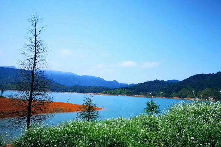 Tanling Reservoir4