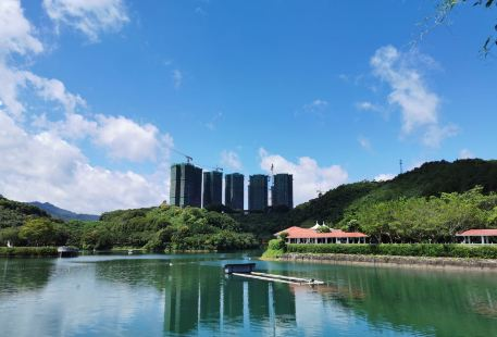 Yanming Lake Tourist Resort