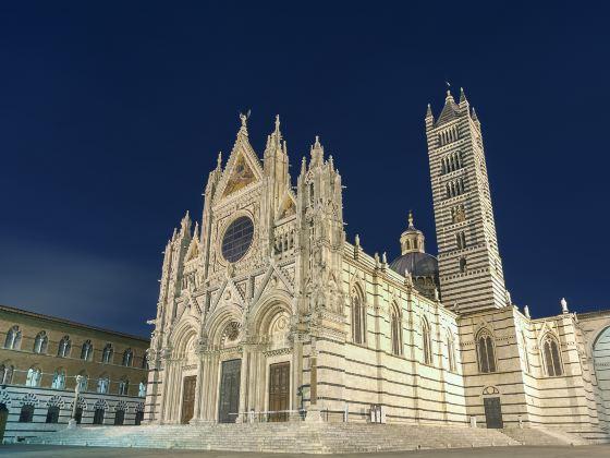 錫耶納大教堂博物館