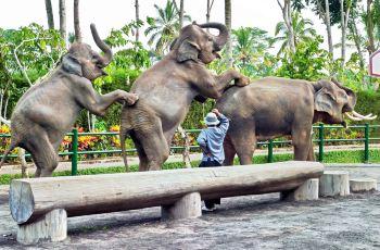 擁抱神奇動物