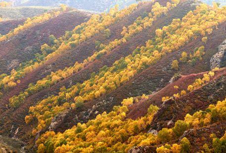 Ma'an Mountain Sceneic Area