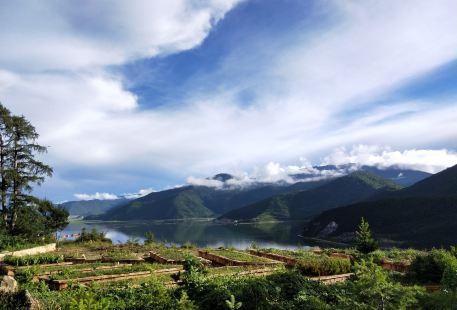 Xianggelila Gao Mountain Botanical Garden