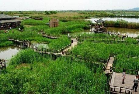 黃金海灘風景區-濕地迷宮