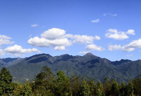 Yinghuagu Sceneic Area