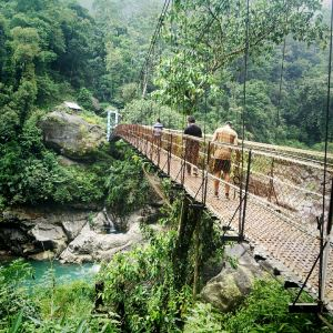 Sikkim,Recommendations