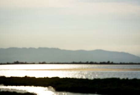 Sugan Lake