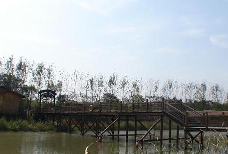 Shiditanxian Amusement Park