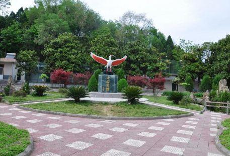Zhuhuan Ecological Park